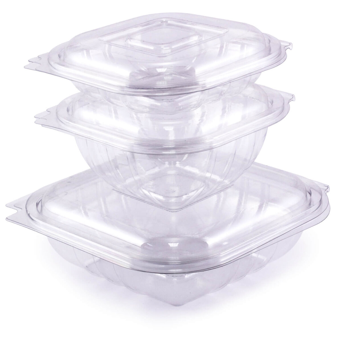 clear plastic salad clamshell